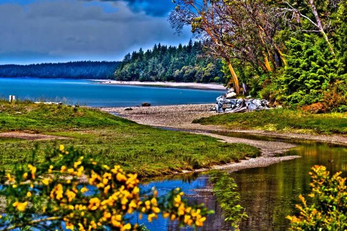 Shelton Beach Puget Sound View